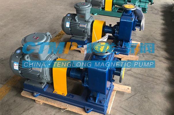 腾龙ZX不锈钢自吸泵发往上海浦景化工