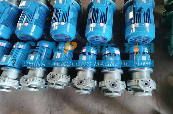 腾龙TMF-N氟塑料磁力泵发往湖北清辉环保科技